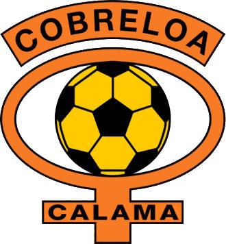 Logo de C.D. COBRELOA (CHILI)