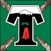 Logo C.D. TEMUCO