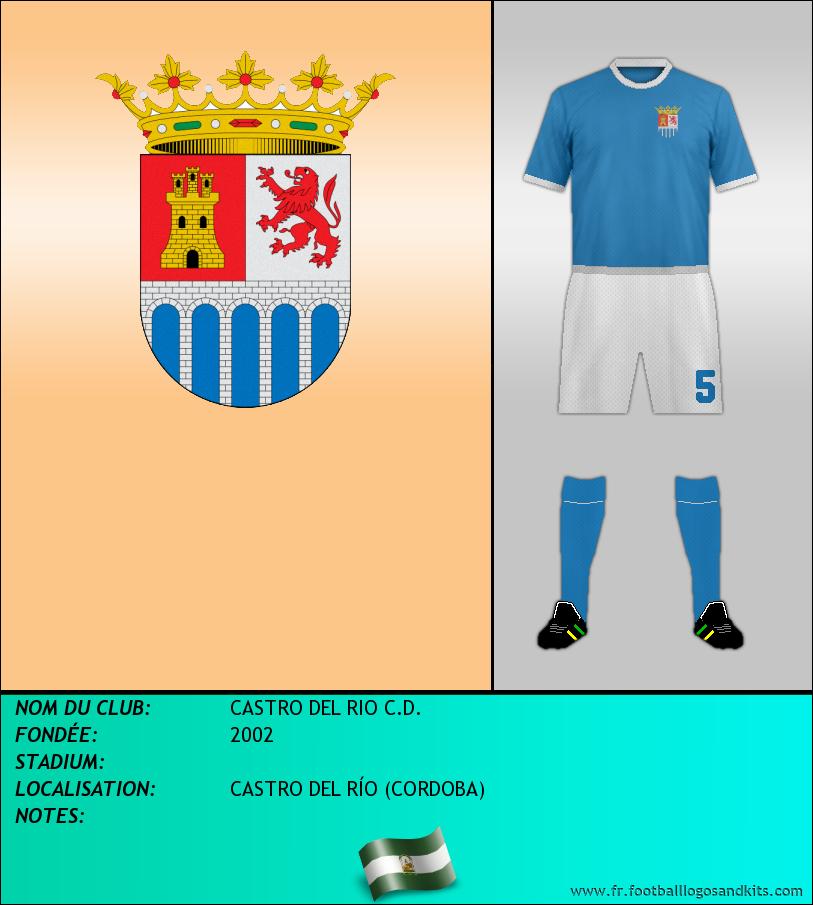 Logo de CASTRO DEL RIO C.D.