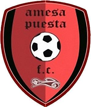Logo C.D. AMESA PUESTA (ARAGON)