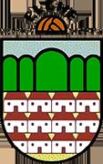 Logo of C.D. ELCHE DE LA SIERRA