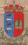 Logo de C.D. PUEBLANUEVA