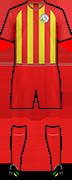Kit C.F.B. 2012 PALLARESOS