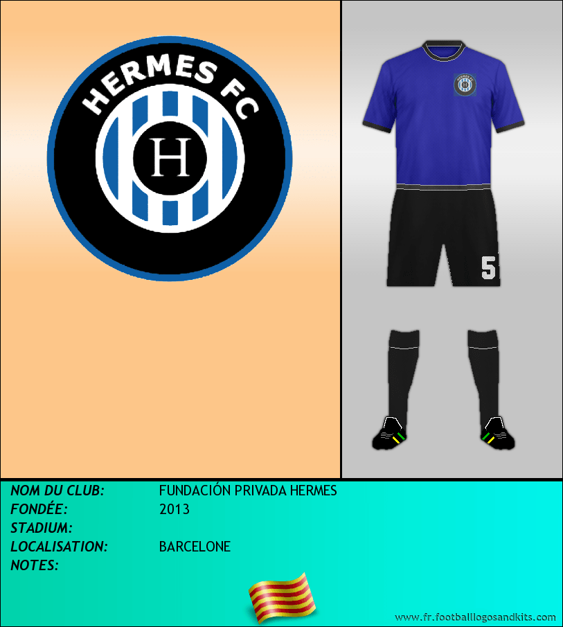 Logo de FUNDACIÓN PRIVADA HERMES