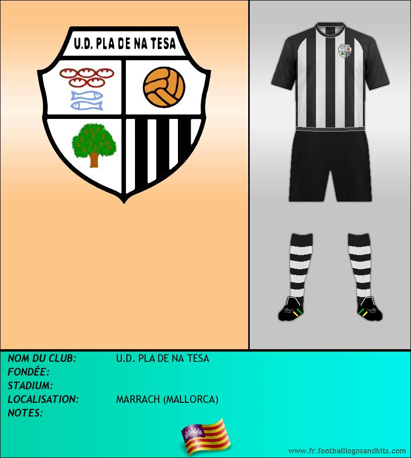 Logo de U.D. PLA DE NA TESA