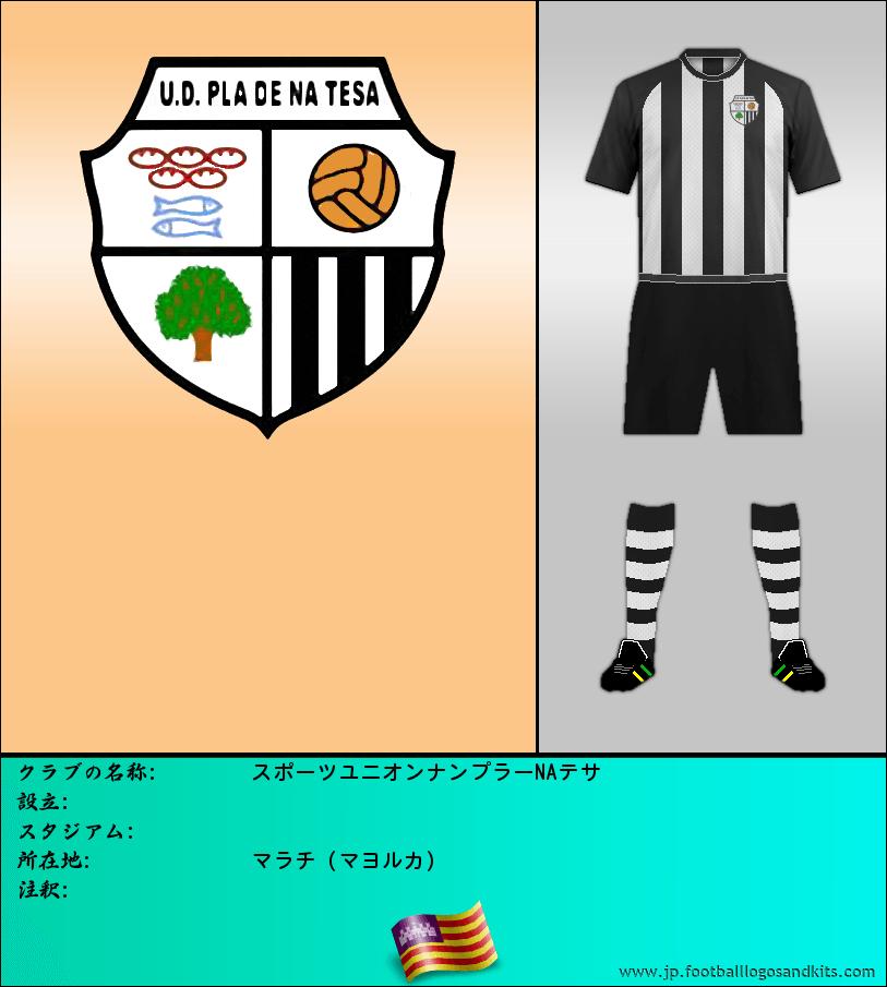 のロゴスポーツユニオンナンプラーNAテサ