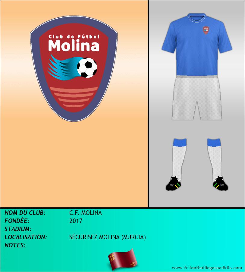Logo de C.F. MOLINA