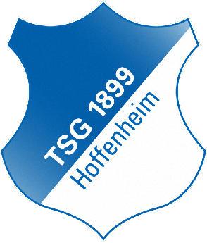 のロゴTSGホッフェンハイム1899 (ドイツ)