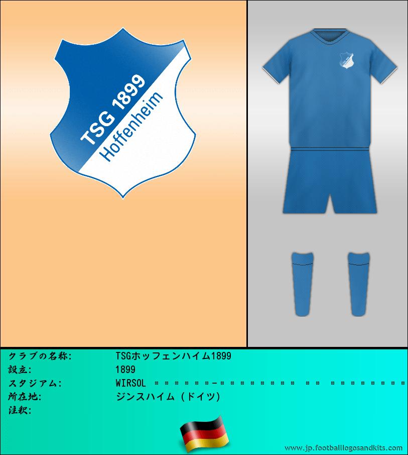 のロゴTSGホッフェンハイム1899