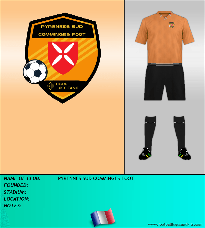 Logo of PYRENNES SUD COMMINGES FOOT