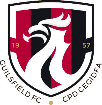 Logo of GUILSFIELD FC (WALES)