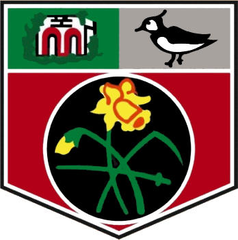 Logo of UNDY ATHLETIC FC (WALES)