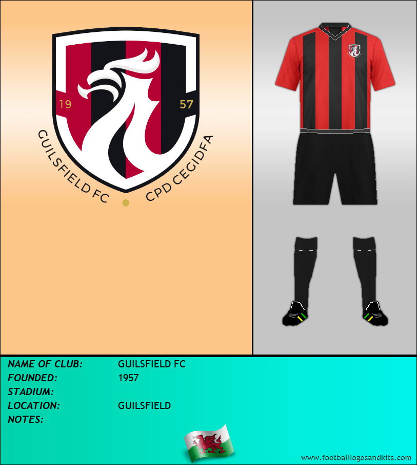 Logo of GUILSFIELD FC