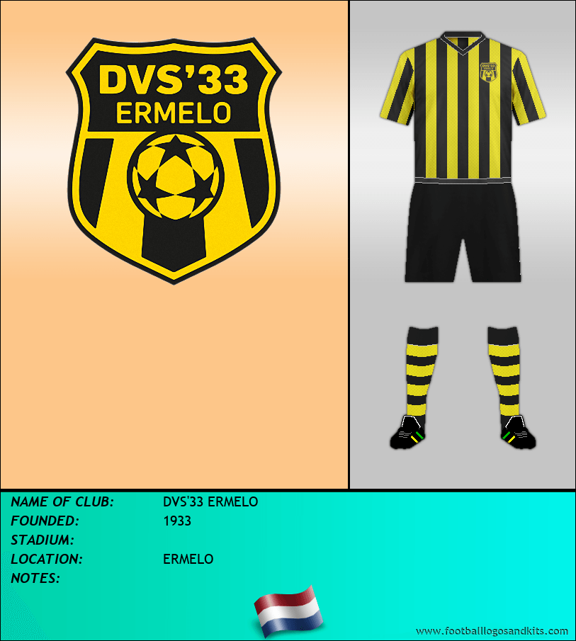 Logo of DVS'33 ERMELO