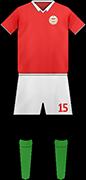 キットハンガリーのサッカー代表