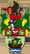 Logo di RUNCORN LINNETS F.C.