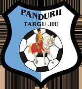 标志政务司司长 PANDURII 表面联检组